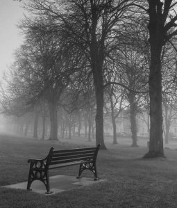 12b Winter Cambridge Park b&w